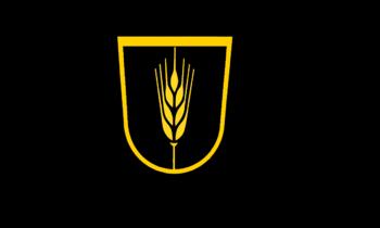 Fondazione della Repubblica del Volga
