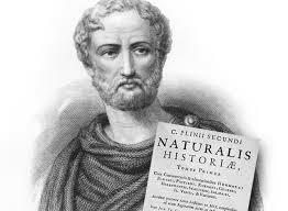 Siglo I A.C - Plinio el viejo