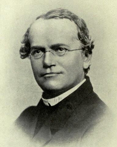 Gregor Mendel ( 1865)