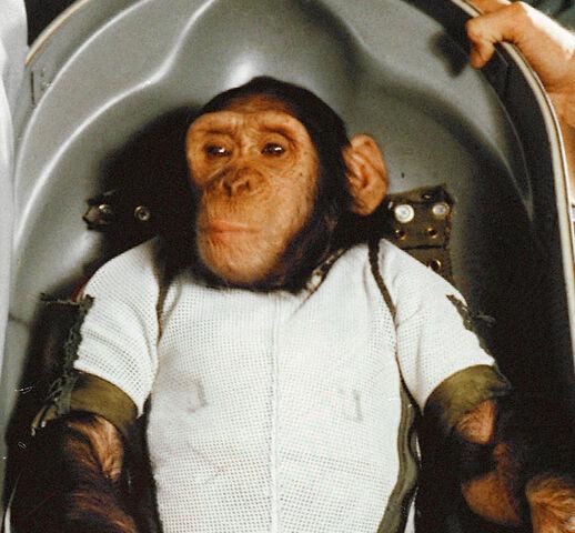 First Humanoid animal Ham (chimpanzee) in Space