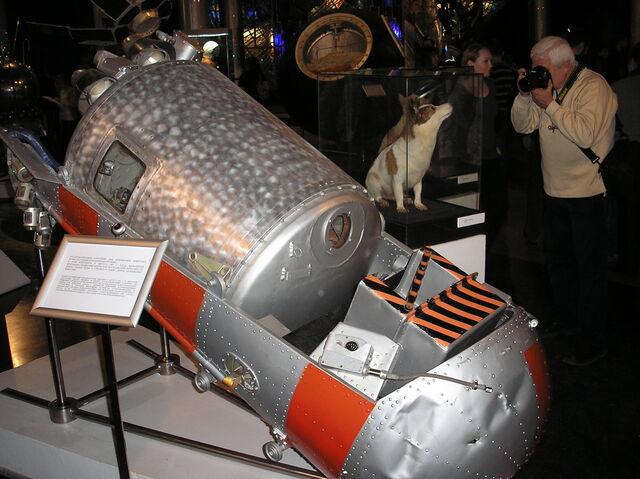 First animals returned alive from space, Sputnik 5