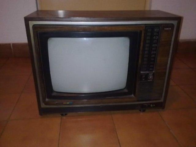Televisión que existía en mi casa