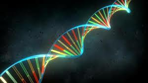"Nace"" la primera célula viva con ADN sintético"