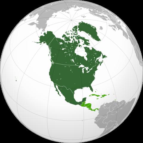 El Congrés nord-americà decreta l'embargament d'armes a Espanya per als dos bàndols.