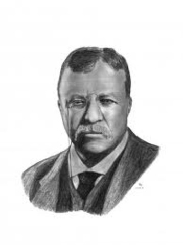 Roosevelt in Office