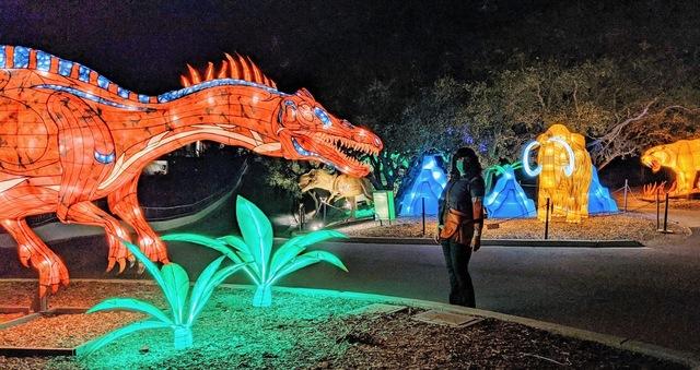 [Personal] Glowfari Outing at Oakland Zoo