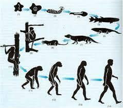 Descubrimiento de Charles Darwin