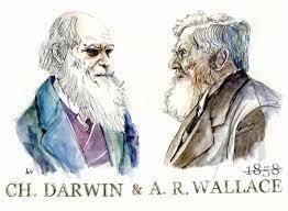 Darwin recibe una carta de Wallace.