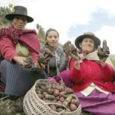 Derechos de las Mujeres en las comunidades Campesinas  timeline