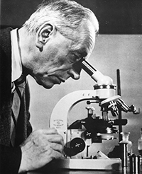 Invention of the phase-contrast microscope