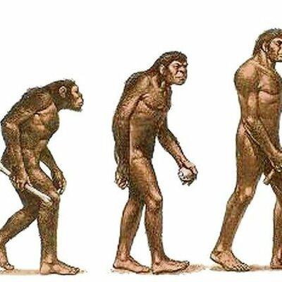 Historia del Conocimiento timeline