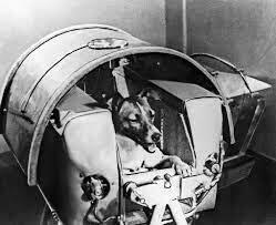Soviet Union Launches Sputnik 2