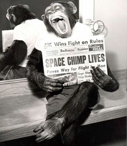 First Humanoid Animal In Space
