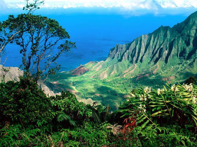Hawaii receives full territorial status