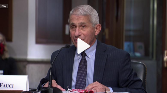 Fauci Warns New COVID-19 Cases Could Hit 100,000 a Day