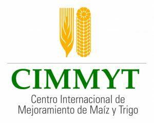Surje el CIMMYT