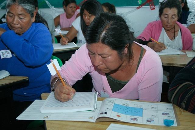 Se promovió la Ley Nacional de Educación para Adultos.