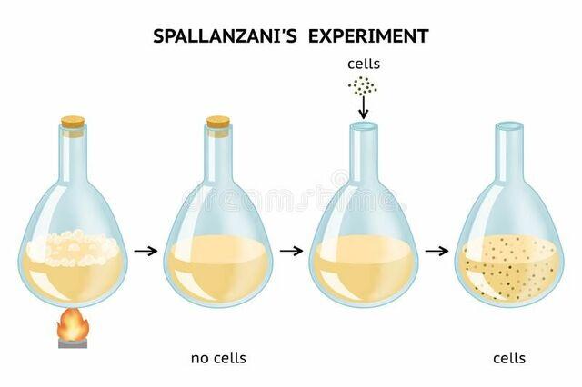 Lazzaro Spallanzani