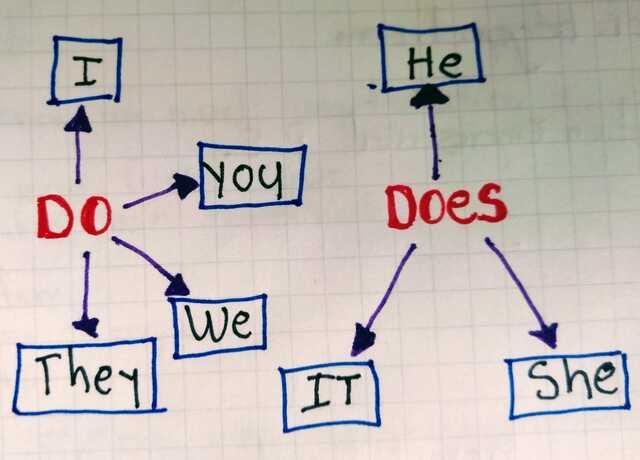 Present Simple Negative & Interrogative Form