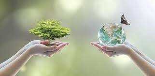 """Aparición del concepto """"Desarrollo sostenible"""""""