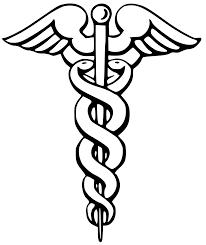 Beginning Medical School