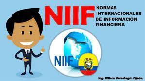 LAS NORMAS INTERNACIONALES DE INFORMACION FINANCIERA (NIIF)