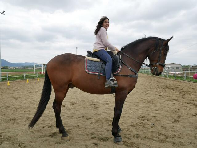 A cavall