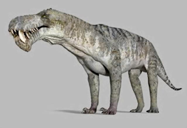 Un predatore feroce, il Gorgonopside