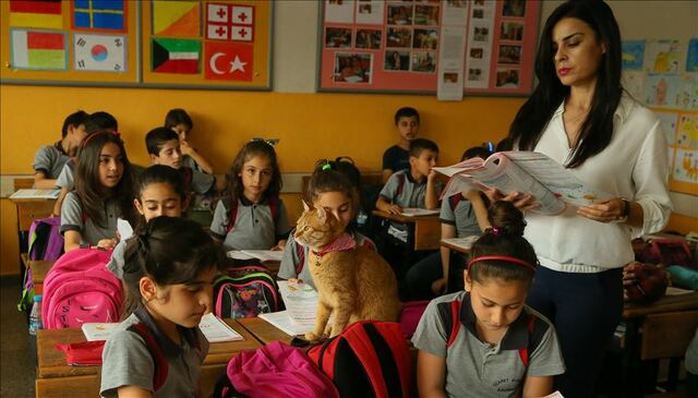 Education and teaching suspended in Turkey