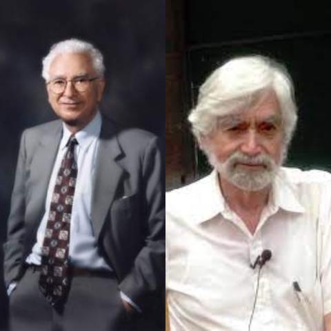 Murray Gell-Mann y George Zweig