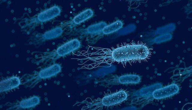 Formazione delle prime forme di vita microscopiche
