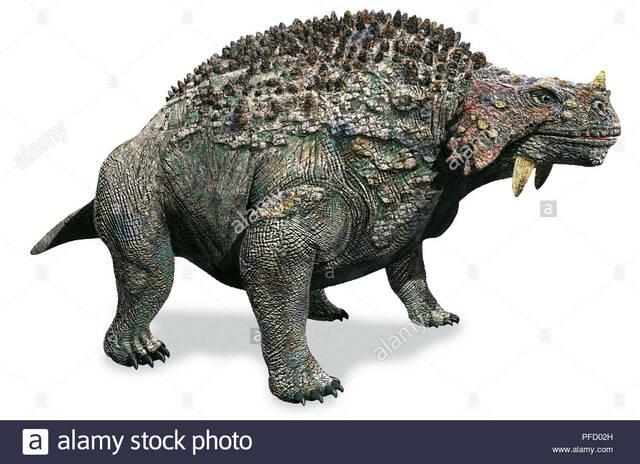 L'evoluzione in Scutosauri