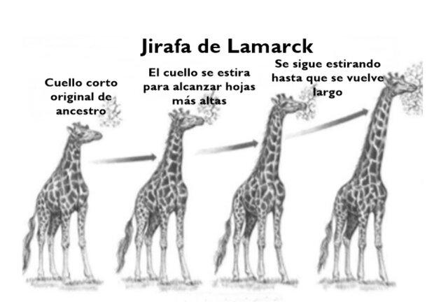 Jean-Baptiste Lamarck: 1809
