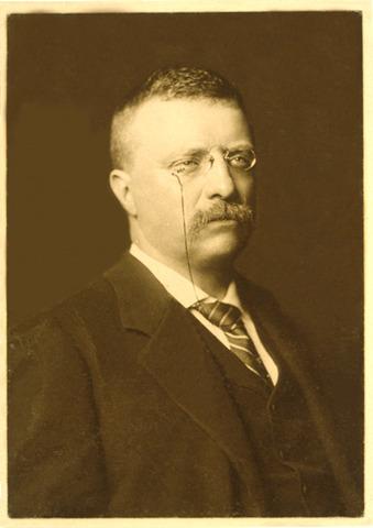 Roosevelt Vice President