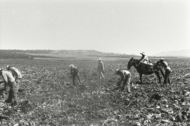 Aprobación de la Ley de Bases para la Reforma Agraria.