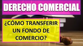 TRANSFERENCIA DEL FONDO DE COMERCIO - Ley 11.867 timeline