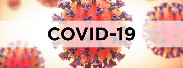 Estado de alarma por Covid-19
