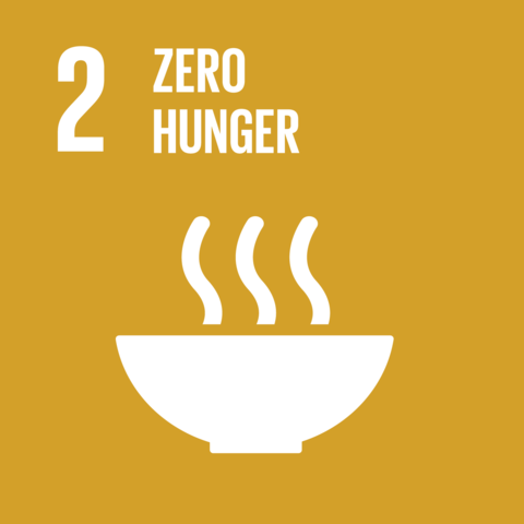 The Sustainable Development Goals were Created