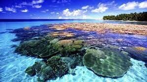 Teoría de la formación de los arrecifes de coral