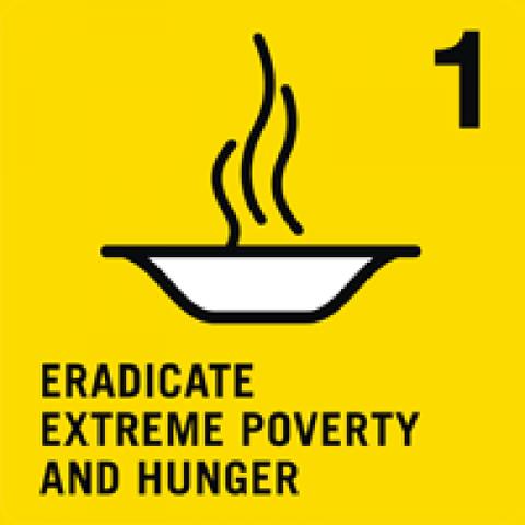 Millennium Development Goal 1: Eradicate Extreme Poverty and Hunger
