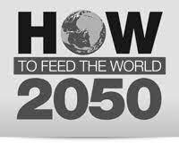 Expert Forum: How to Feed the World in 2050