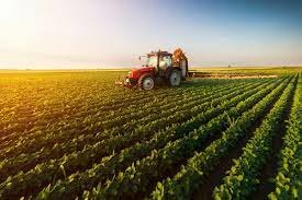 Investment in Agriculture and Food Systems