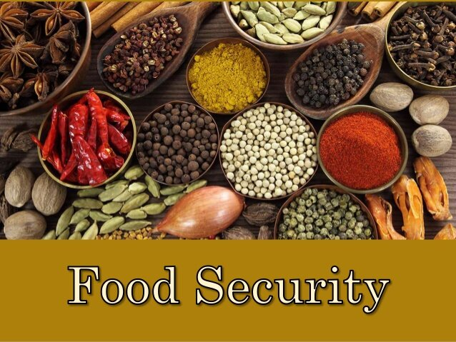 Video: What is Food Security?
