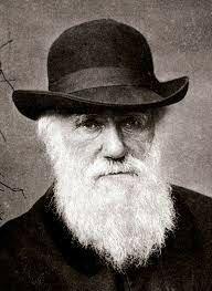 Antecedentes cientificos. Charles Darwin (1809-1882).