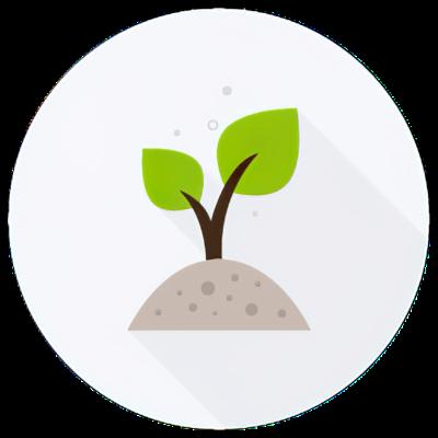 Las políticas y normas ambientales desarrolladas en México  timeline