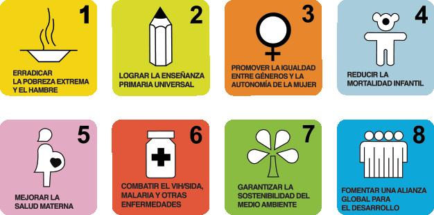 Metas y estrategias para el cumplimiento de los Objetivos de Desarrollo del Milenio en Colombia.