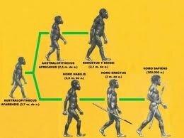 L'origen de l'home