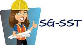 Evolución SGSST timeline