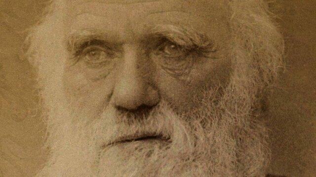 La mort de Darwin