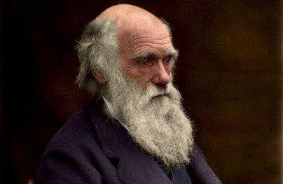 DARWIN (1882)
